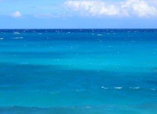 Discounted cruises from Galveston Texas see Bahamas, Jamaica, Mexico & more