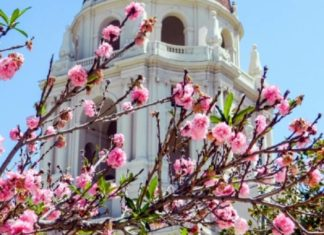Win a free trip to Pasadena California travel sweepstakes