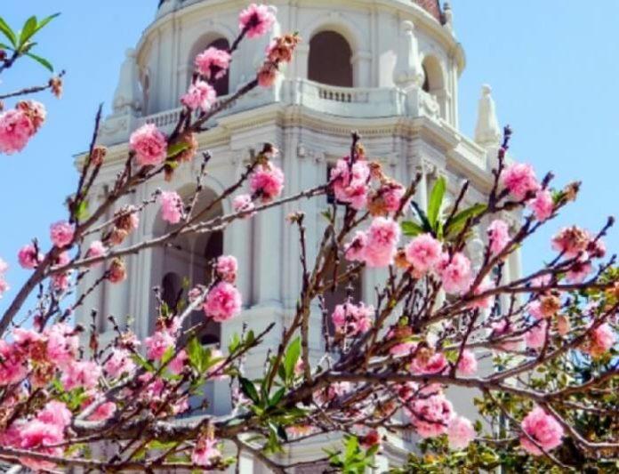 Win a free trip to Pasadena California travel sweepstakes