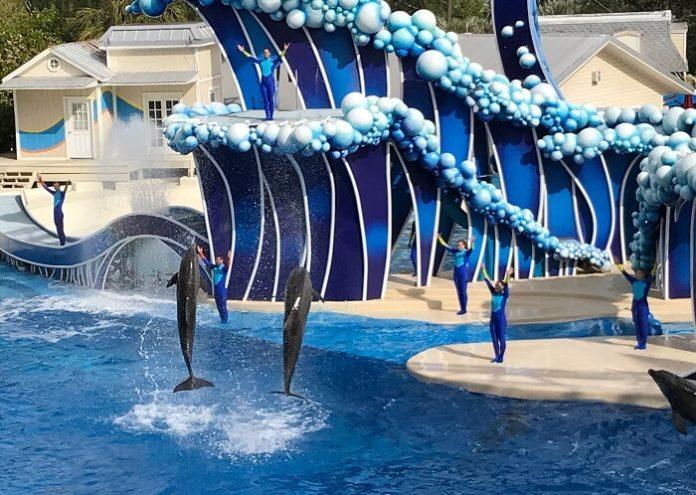 Win a free trip to Orlando tickets to SeaWord Busch Gardens & Aquatica