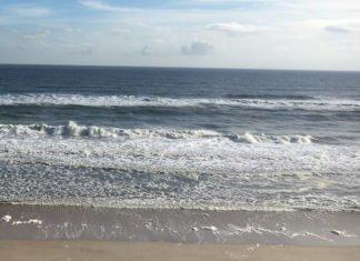 Get 20% off hotels in Orlando, Daytona Beach, Ormond Beach Florida area