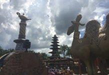 Win a free trip to Walt Disney World Resort In Orlando Florida