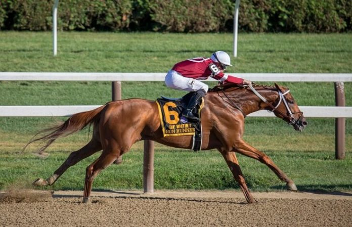 Enjoy horse racing & mineral springs by staying at top Saratoga Springs NY hotel