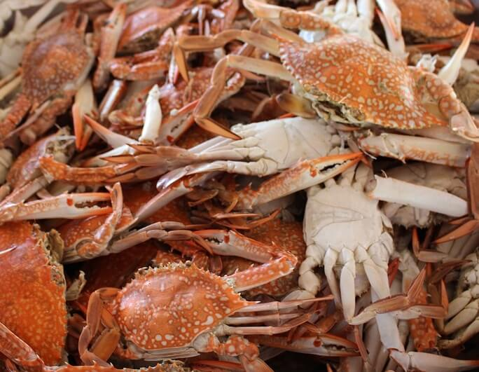 Half off admission to Maryland Seafood Festival in Annapolis