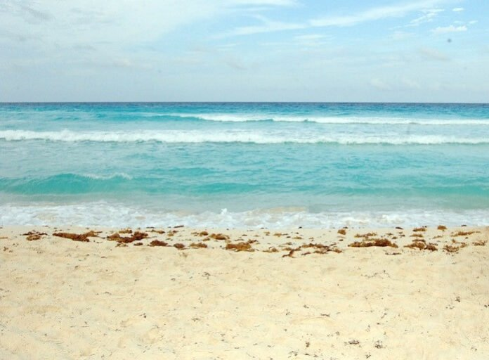 Playa del Carmen Mexico hotels under $100/night