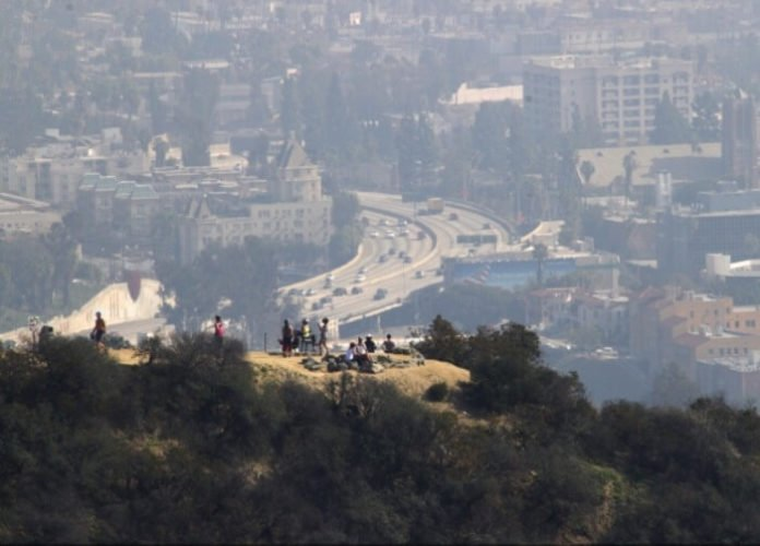 Discount price for Hollywood Hills hike with expert guide