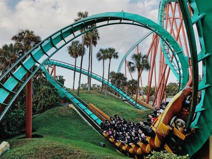 Top 7 Busch Gardens Tampa Vacation Packages Green