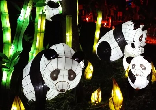 Save money on Chinese lantern festival at Ohio Expos Center in Columbus