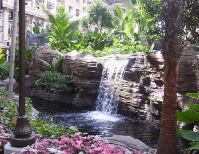 How you can win a free vacation worth $1000 to a Gaylord hotel