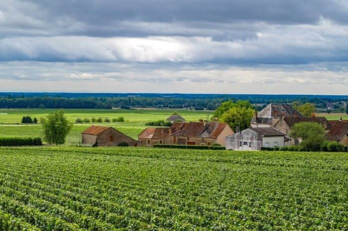 Win a free wine tour in Burgundy France plus airfare & hotel
