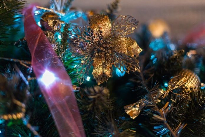Save on day tour from Boston to Newport for tour of holiday decorations, Christmas shopping