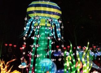 How to save money on Chinese Lantern Festival near Atlanta Georgia