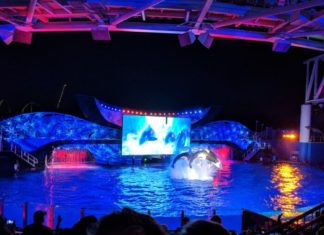 How to get discounted tickets to SeaWorld San Antonio Christmas Celebration