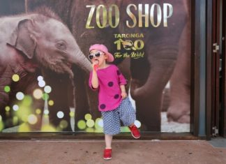 Best ways to spend time in Sydney Australia when traveling with children