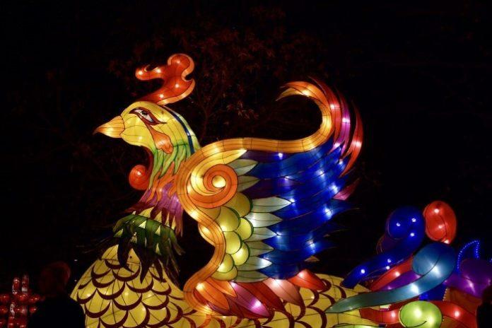 Discount admission to light display & lantern festival is Tucson AZ