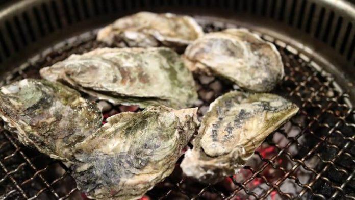 Discounted admission to Mardi Gras oyster festival in Atlanta Georgia area