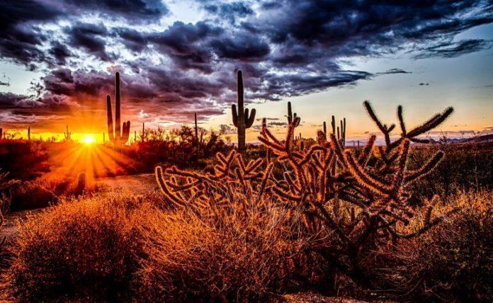 Win free flight to Arizona stay at Hotel Valley Ho in Scottsdale mountain biking go kart