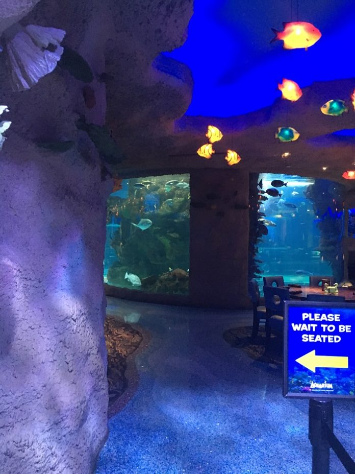 Save money on Houston Texas family fun with aquarium tickets & Landry's gift cards