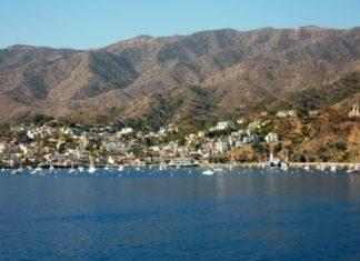 Discounted cruises from LA see Catalina Island, San Francisco, Vancouver, Cabo, Puerto Vallarta...