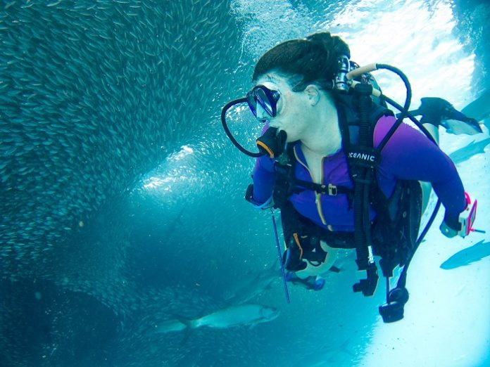 Win a free adventure vacation to the Virgin Islands airfare & scuba lessons included