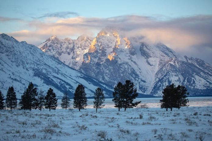 Win stay at Teton Mountain Lodge Jackson Hole lift package dogsledding experience