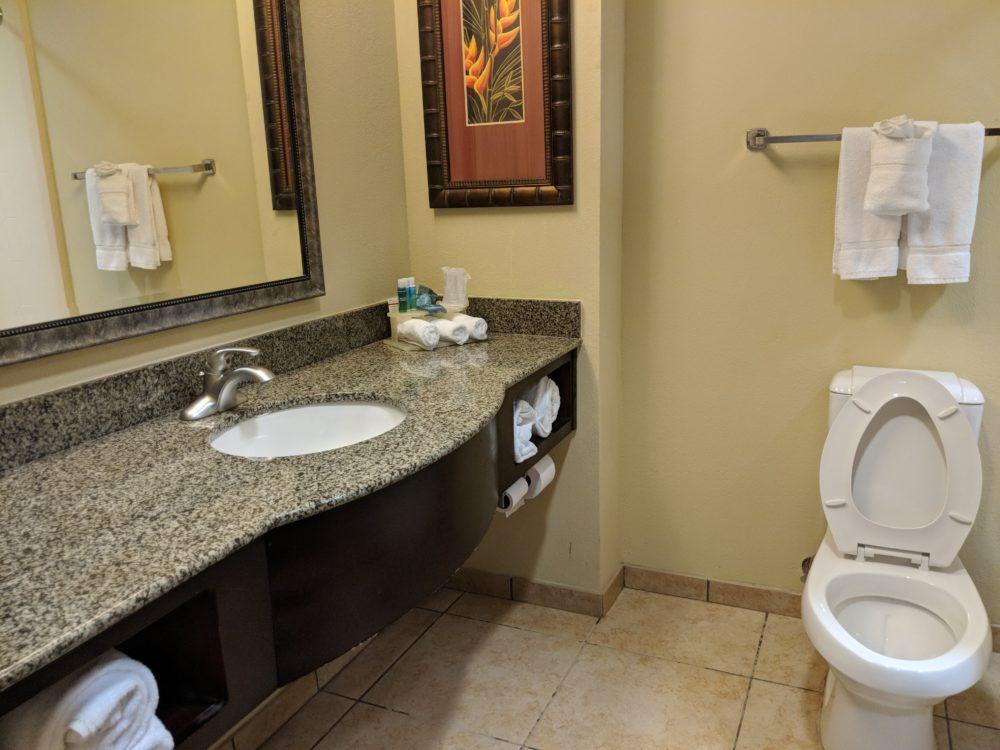 Holiday Inn Express Busch Gardens Tampa Florida has spacious bathrooms