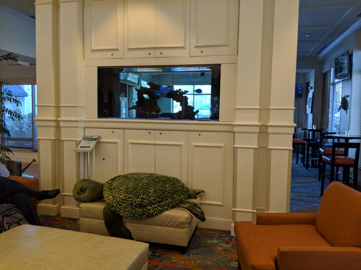 A picture of the beautiful lobby at Hilton Garden Inn at SeaWorld in Orlando, Florida