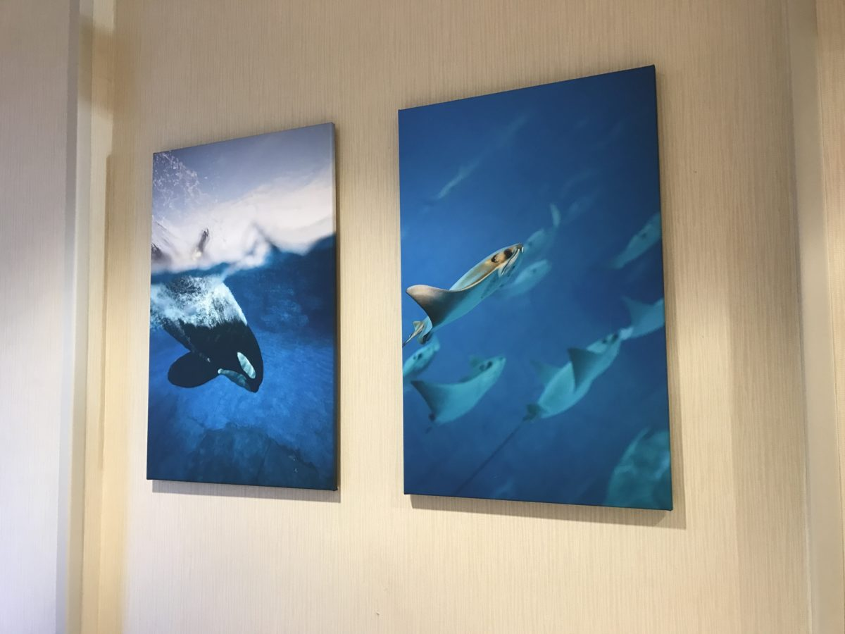 Hilton Garden Inn Orlando at SeaWorld has a beautiful lobby with sea pictures