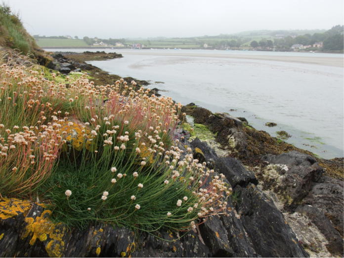 How you can win a trip to Inchydoney in Ireland for free