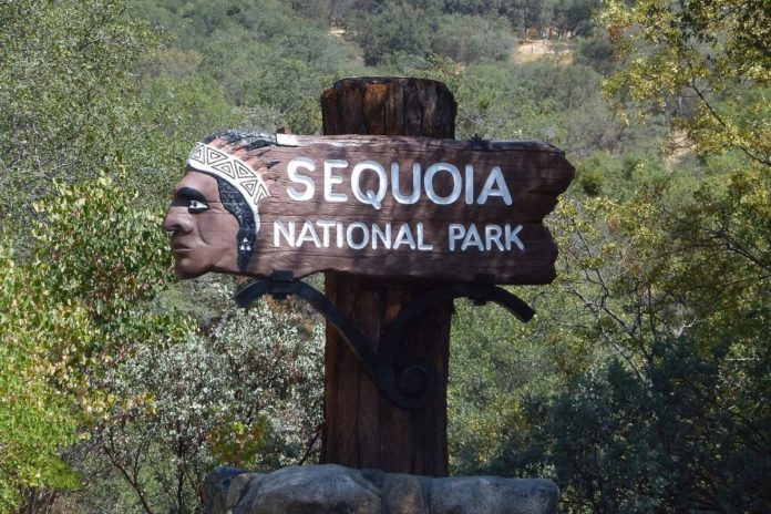How to find a great hotel for a vacation exploring Sequoia National Park