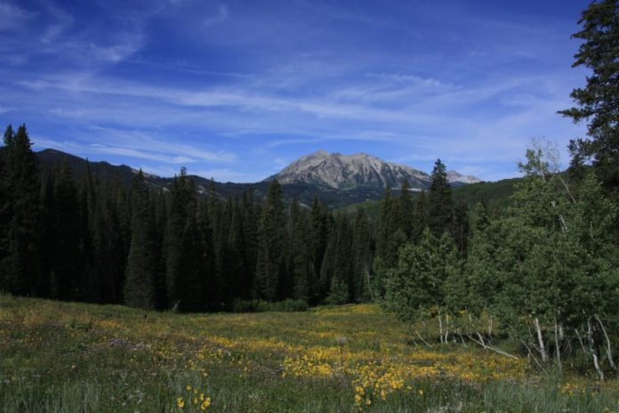 Where to stay in Crested Butte Colorado & how to find the lowest prices