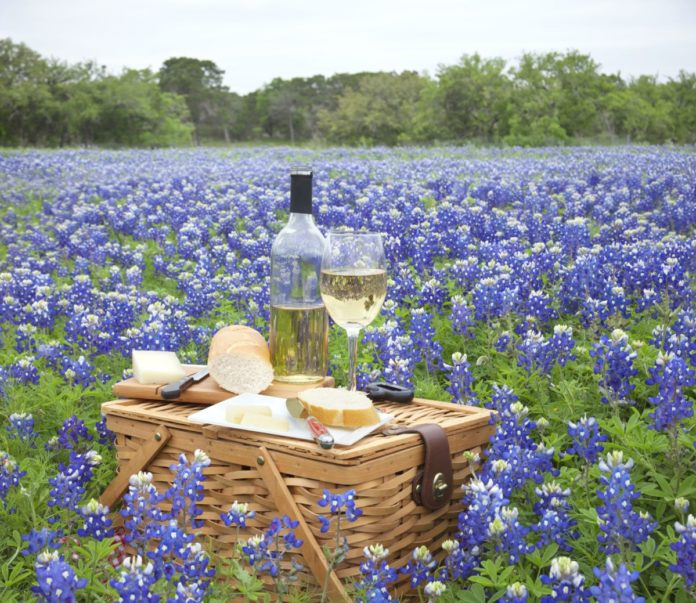 How to save money on lodging near Texas vineyards & wineries