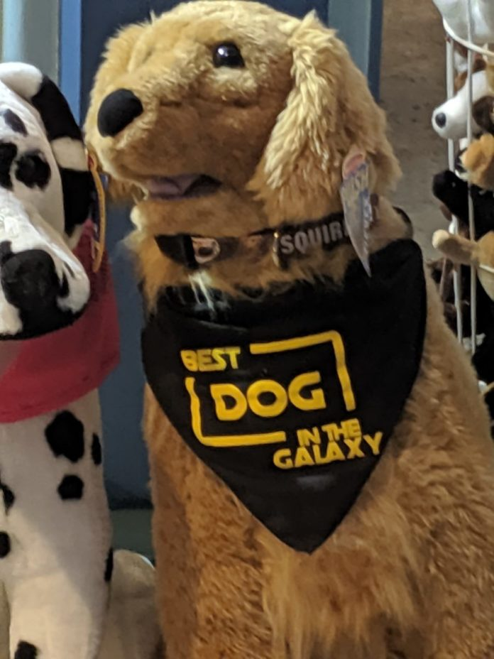 Great gift ideas for a pet Disney dog accessories