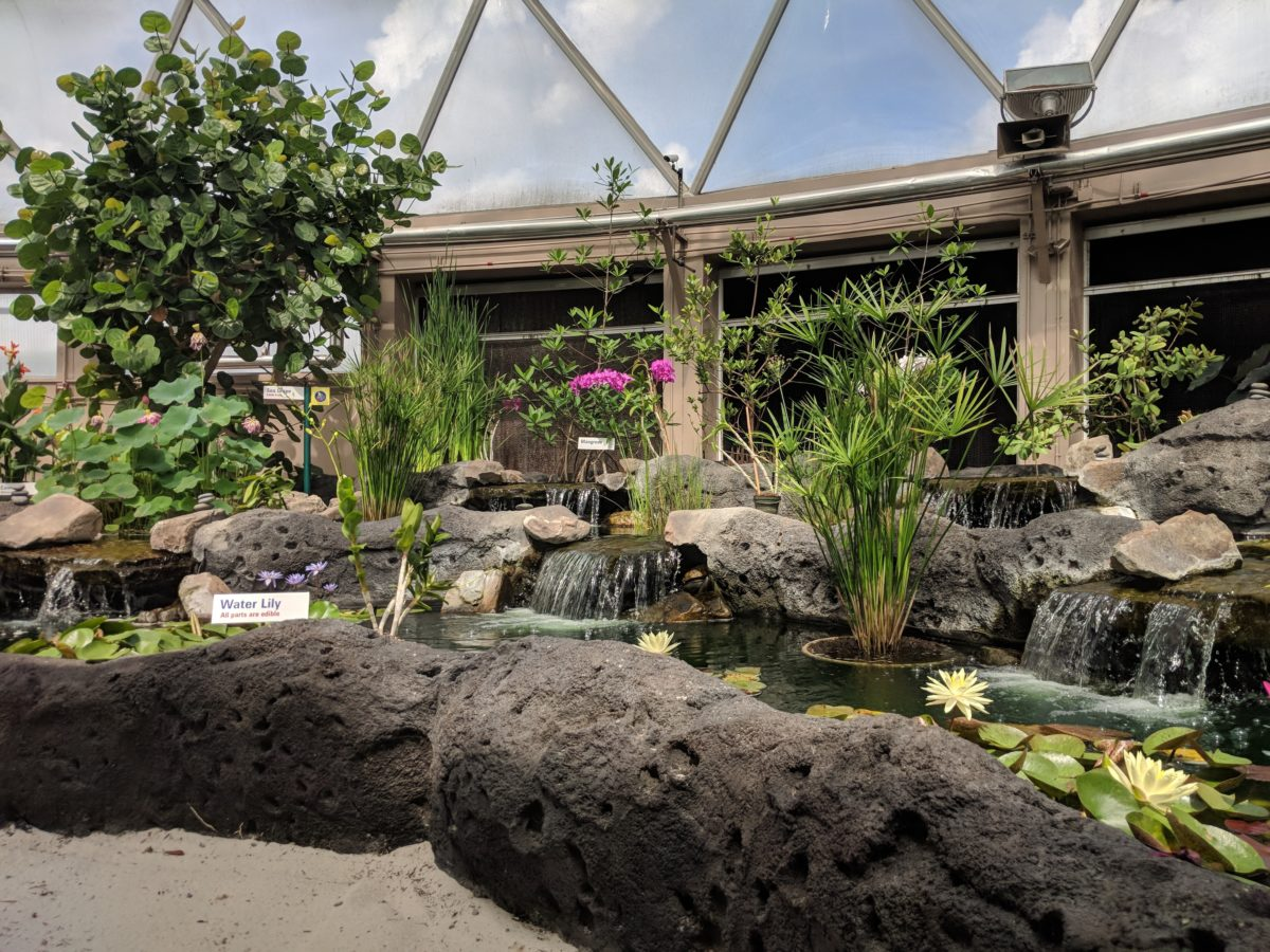 Disney's EPCOT has an indoor air conditioned pavilion with a boat ride where you tour a greenhouse