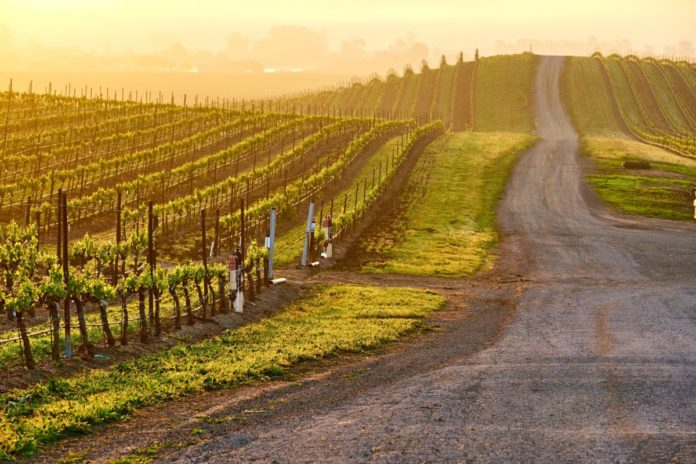 Learn what the best hotels in Napa Valley California are & how to get a good deal there