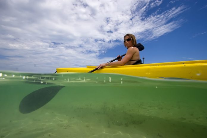 Find out what the best eco tours are in Key West, Florida